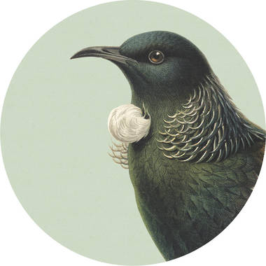 Cork Backed Coaster - Green Tui