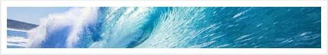 shutterstock saltwater med withborder2