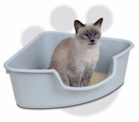 Cat_Litter_Box