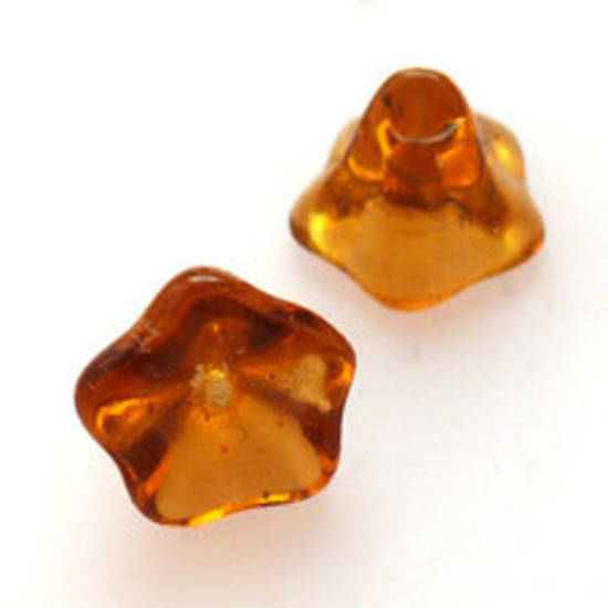 NEW! Cupped Flower, 10mm - Amber