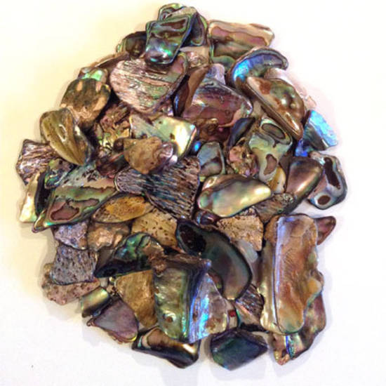 Paua Shell Mixed Pack