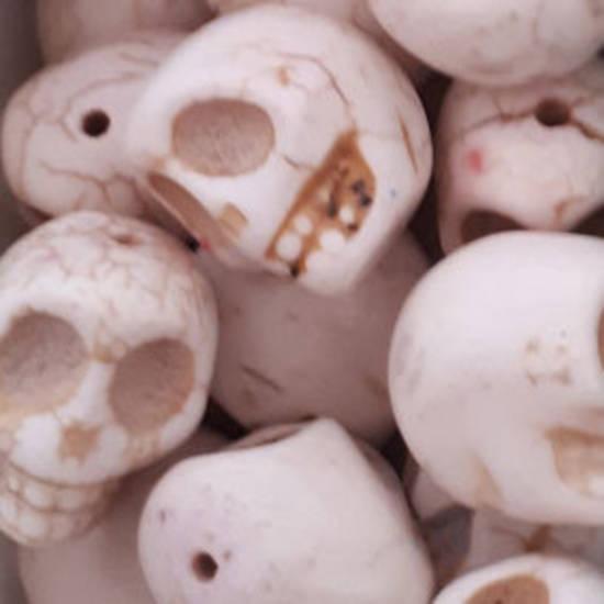 Howlite Skull: Large - Bone