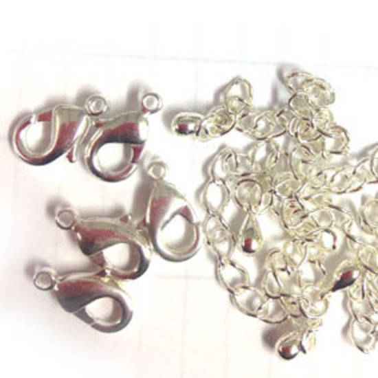 PARROT CLASP PACK, with extender chains - Bright Silver