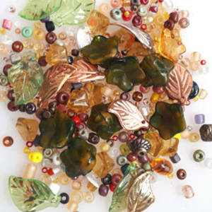Seed, Leaf and Flower MIX - autumns
