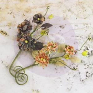 Prima Flowers - Bosque Tea Thyme