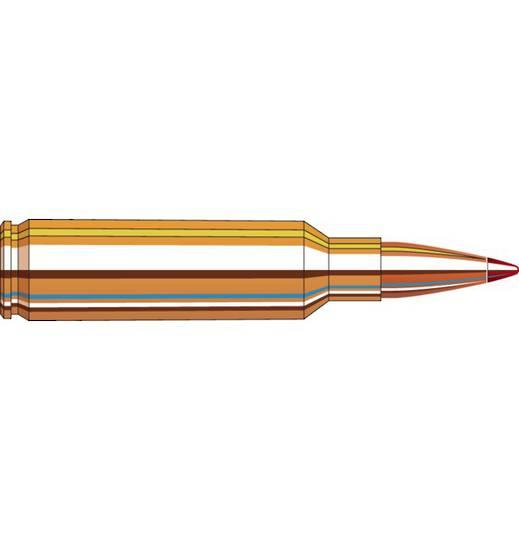 Hornady Precision Hunter 300 WSM 200gr ELD-X x20