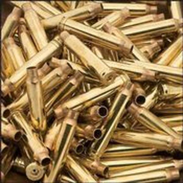 Remington Ziploc 220 Swift Rem Brass x100
