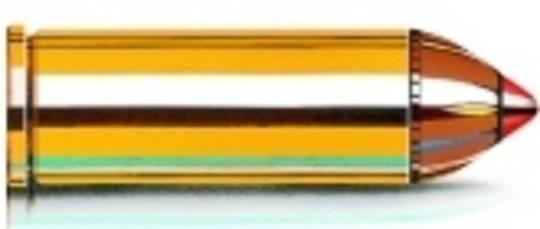 Hornady Leverevolution 45/70 325gr FTX 82747
