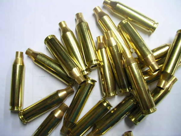 Remington 223 Rem Brass x100