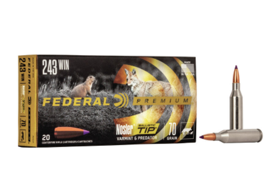 Federal Premium 243Win 70gr Nosler BT x20