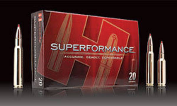 Hornady Superformance 22-250 50gr V-Max Varmint 20 Rounds