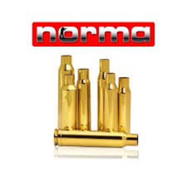 Norma Brass 308Win x100