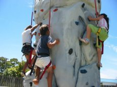 Kiwi__Rockwall_Kids__Climbing.jpg