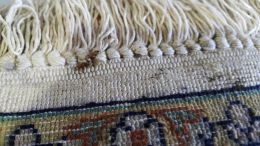 Removing mold from the rug