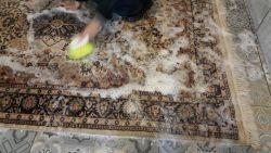 oriental carpets & rugs
