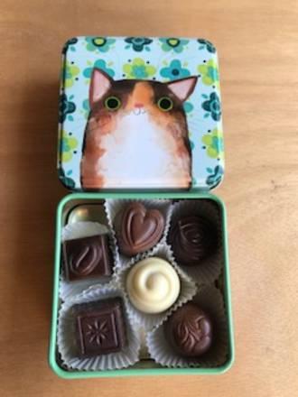 Cat tin 2