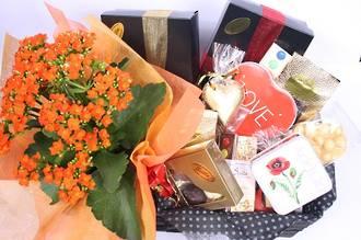 Plant and Chocolate Gift Basket - Premium