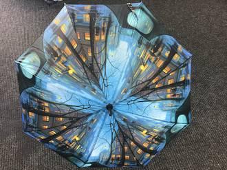 Rainy Evening Umbrella