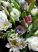 Florists Choice - Soft Pastels