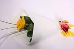 Rose & Heart