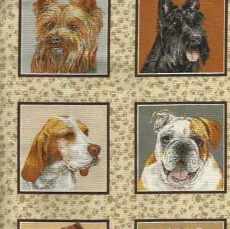 Doggies Delight