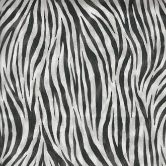 Safari - Zebra