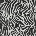Wild Side - Zebra