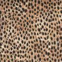 Wild Side - Leopard