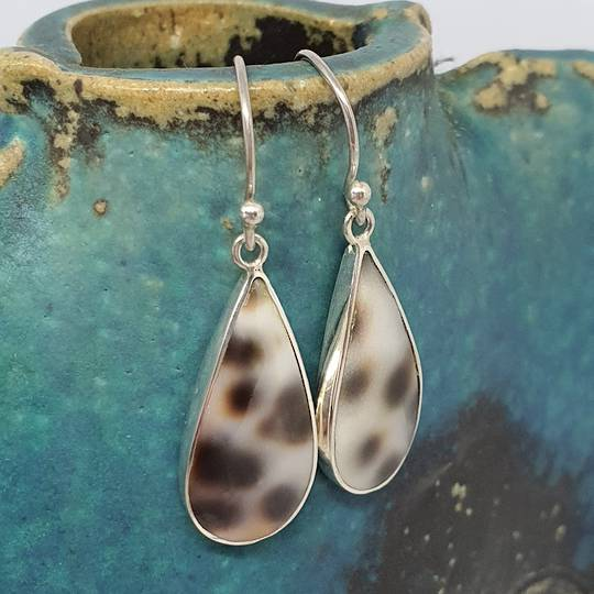 Sterling Silver Cowrie Shell Earrings