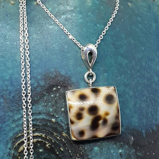 Sterling silver cowrie shell pendant with chain