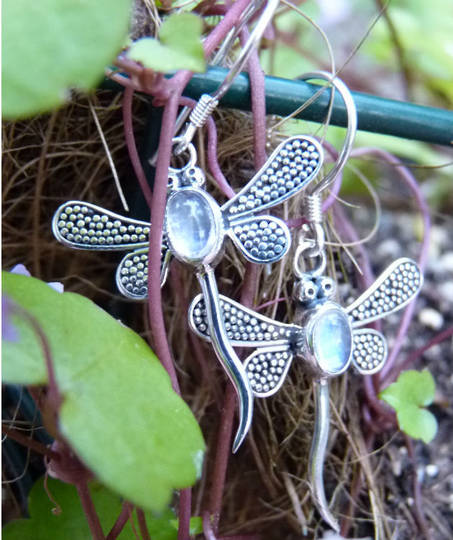 Silver moonstone dragonfly earrings