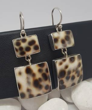 Large statement cowrie shell silver earrings
