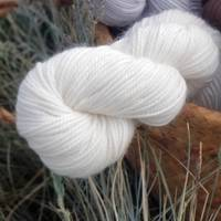 Maple Wool 4ply - Egg