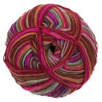 Fiddlesticks Sock Yarn 140-04