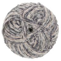 Fiddlesticks Sock Yarn 170-02