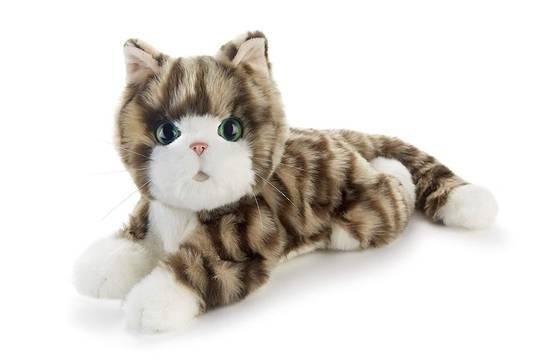 Companion Pet/Silver Tabby Kitten