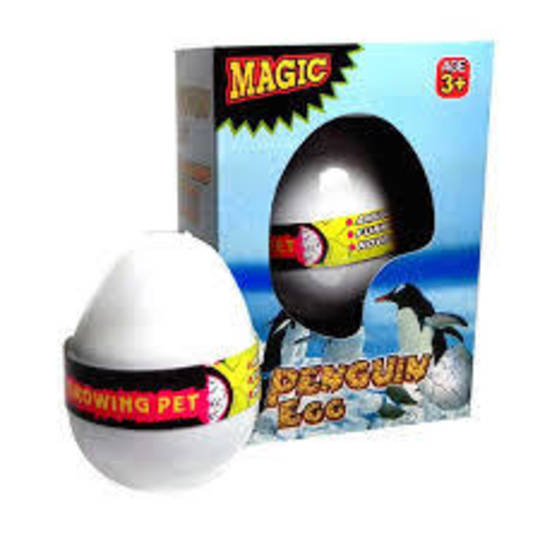 Growing Pet Penguin Egg