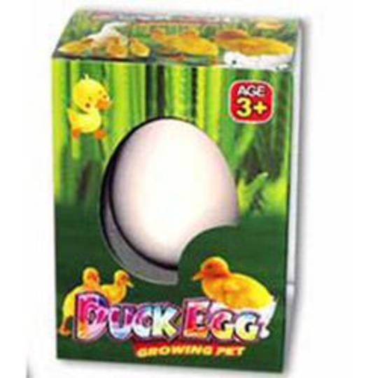 Growing Duck Magic Hatch Em