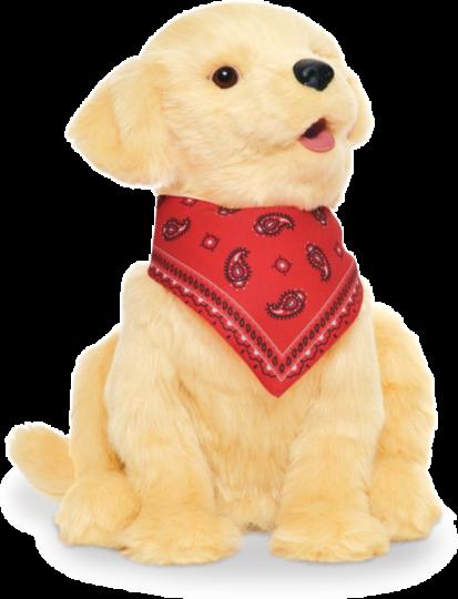 Companion Pet/Pup