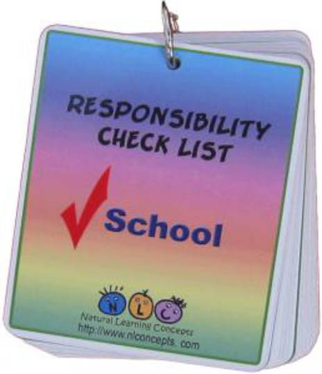 Responsibility Check List - School
