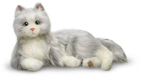 Companion Pet/Silver Cat with White Mitts