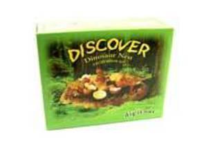 Dinosaur Nest Excavation Kit