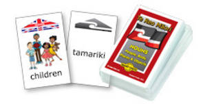 Smart Chute Cards - Te Reo Maori Noun Cards
