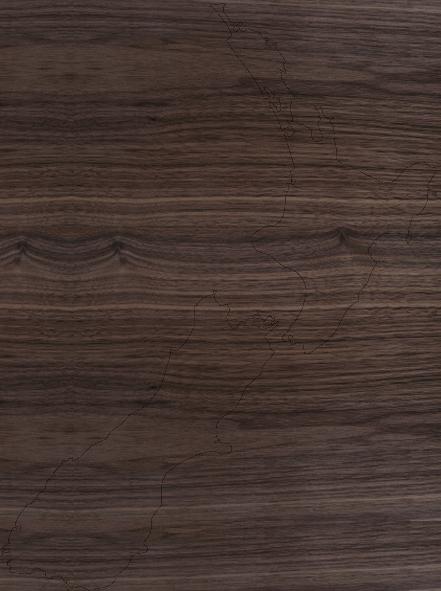 NZ Blank Retailer Map
