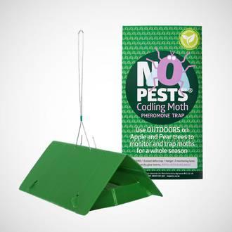 Codling Moth Trap - Pheromone
