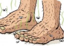 Feet-435