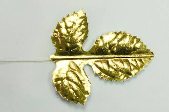 Gold Leaf 50mm Wired (50)