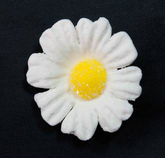 Daisy White Icing Flower 40mm (32) - SOLD OUT