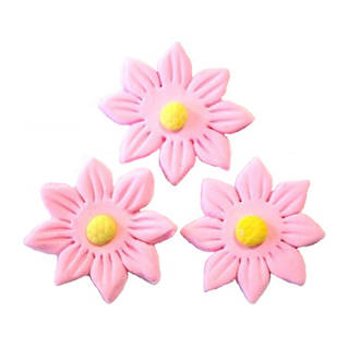 Icing Pink Daisy, 35mm.  Box of 120