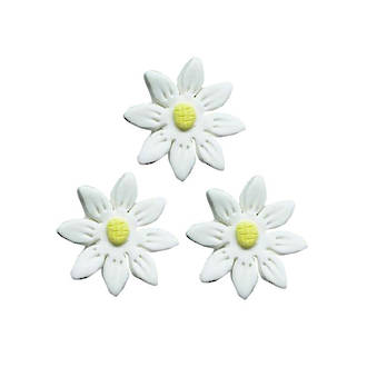 Icing White Daisy, 35mm.  Box of 120